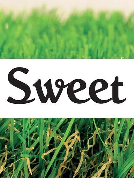 Green €co Sweet