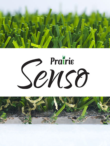 Green Touch Prairie Senso